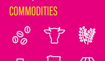 Commodities | Infográfico