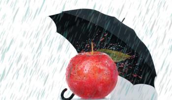 Por que uma maçã não é uma maçã?