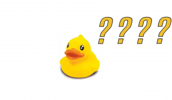 Por que não vamos pagar o pato?