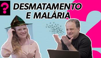 Reforma tributária, desmatamento e malária | Economia é Tudo! #59